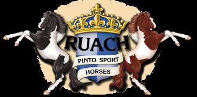 Ruach_Pinto_Sport_Horses_logo2020